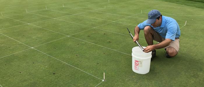 soil sampling on a putting green